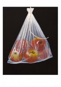 Apples in a Bag Kate Greenaway 2013 Winning Painting